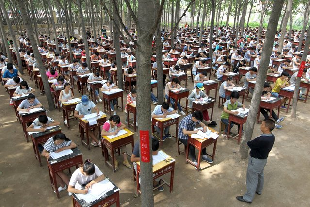 Students take term final exam among trees outside a classroom building at a middle school in Xinxiang, Henan province, China, July 3, 2015. (Photo by Reuters/Stringer)