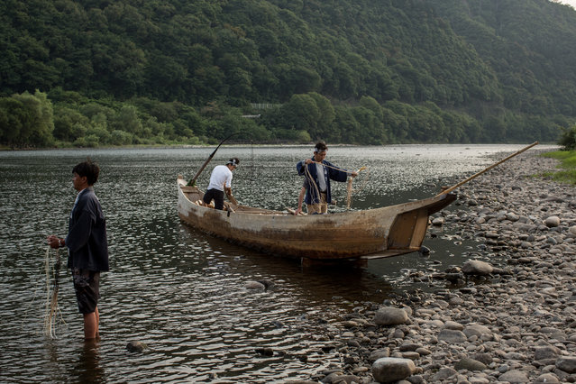 """Cormorant masters and boatmen prepare for the nights """"Ukai"""" on July 2, 2014 in Gifu, Japan. In this traditional fishing art """"ukai"""", a cormorant master called """"usho"""" manages cormorants to capture ayu or sweetfish. The ushos of River Nagara have been the official staff of the Imperial Household Agency of Japan since 1890. Currently six imperial fishermen of Nagara River conduct special fishing to contribute to the Imperial family eight times a year, on top of daily fishing from mid-May to mid-October. (Photo by Chris McGrath/Getty Images)"""