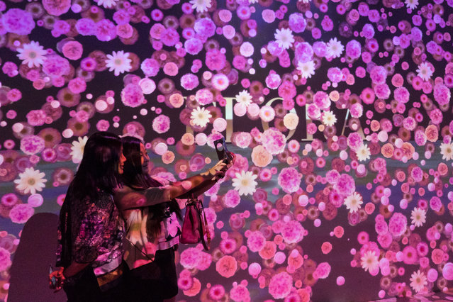 "Girls take a selfie in a house where ""flowers"" cover all the space with the help of a projector at Plaza 66 on August 5, 2015 in Shanghai, China. (Photo by ChinaFotoPress/ChinaFotoPress via Getty Images)"