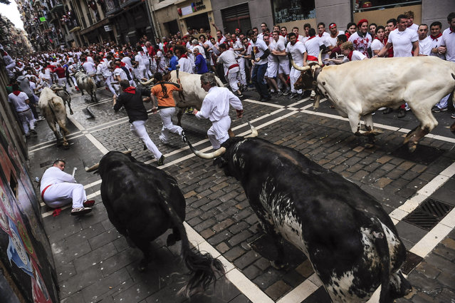 "Revelers run ahead of ""Torrestrella'"" fighting bulls on Estafeta corner during the running of the bulls at the San Fermin festival, in Pamplona, Spain, Monday, July 7, 2014. (Photo by Alvaro Barrientos/AP Photo)"