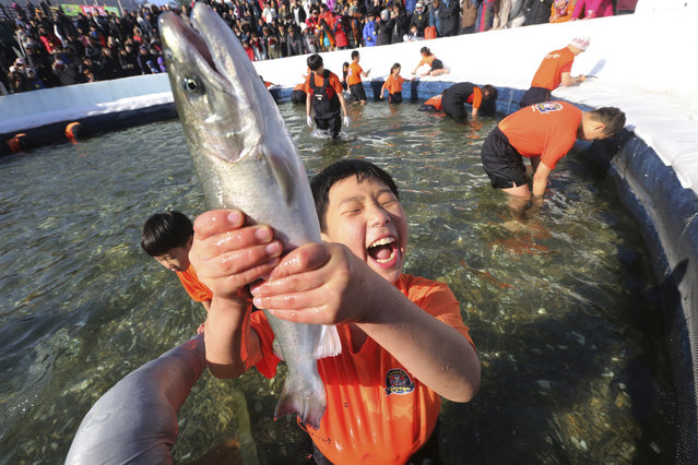 A boy shouts after catching a trout during a trout catching contest in Hwacheon, South Korea, Saturday, January 6, 2018. (Photo by Ahn Young-joon/AP Photo)