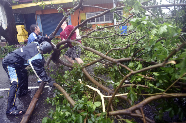 Local residents help clear fallen trees from the streets as typhoon Meranti lashed Kaohsiung, southern Taiwan, on September 14, 2016. (Photo by Sam Yeh/AFP Photo)