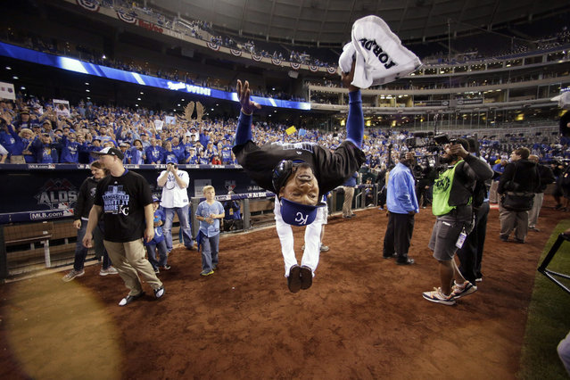 Kansas City Royals center fielder Jarrod Dyson does a backflip on the field as he celebrates his team's 7-2 win over the Houston Astros in Game 5 of baseball's American League Division Series, Wednesday, October 14, 2015, in Kansas City, Mo. (Photo by Charlie Riedel/AP Photo)