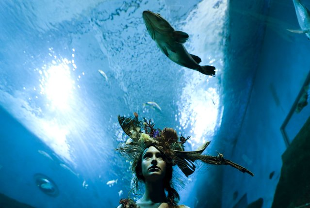 A model wearing a creation by Luis Benitez poses during an urban shooting as part of Andalucia de Moda (Andalusia Fashion) at an aquarium in Seville, southern Spain, November 11, 2015. (Photo by Marcelo del Pozo/Reuters)
