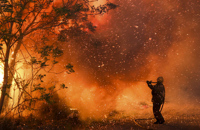 A firefighter battles flames in Cordoba, Argentina, Monday, October 12, 2020. Wildfires have destroyed thousands of hectares in the Argentine province of Cordoba this year, amid a drought and high temperatures. (Photo by Nicolas Aguilera/AP Photo)