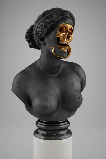 Skullptures by Hedi Xandt