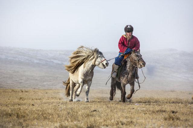A Mongolian Horseman riding their horse. (Photo by Batzaya Choijiljav/Caters News)