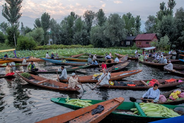Kashmiri men sell their produce at the floating vegetable market on the Dal Lake in Srinagar, Indian controlled Kashmir, Saturday, August 7, 2021. Vegetables traded in this floating market are supplied to Srinagar and many towns across the Kashmir valley. It's one of the major sources of income for the lake dwellers who spend years carefully nurturing their floating gardens from the weed and rich soil extracted from the lake bed. (Photo by Dar Yasin/AP Photo)