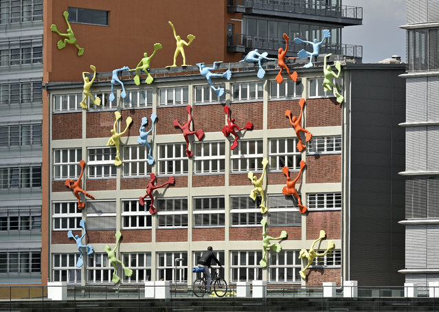 """A man rides on his bicycle in front of a building with climbing up colored sculptures, named """"flossies"""", made by artist Rosalie, at the media port in Duesseldorf, Germany, Thursday, May 21, 2015. (Photo by Martin Meissner/AP Photo)"""