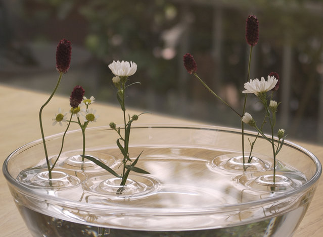 Floating Vases By ooDesign