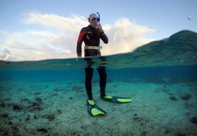 "Peter Gash, owner and manager of the Lady Elliot Island Eco Resort, prepares to snorkel during an inspection of the reef's condition in an area called the ""Coral Gardens"" located at Lady Elliot Island, north-east of the town of Bundaberg in Queensland, Australia, June 11, 2015. (Photo by David Gray/Reuters)"