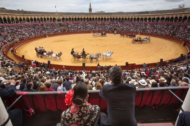 A couple attend the 32nd Carriage Driving Exhibition held at the bullring Real Maestranza in Seville, Spain, during the first day of the Feria de Abril, 30 April 2017. The Feria de Abril (lit. April Fair) is held from 30 to 06 May 2017. (Photo by Pepo Herrera/EPA)