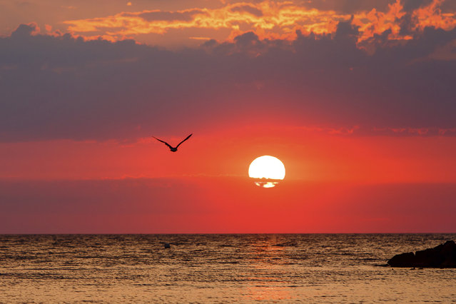 The sun sets over the Baltic Sea in Heidekate, northern Germany, Monday, July 31, 2018. (Photo by Frank Molter/DPA via AP Photo)
