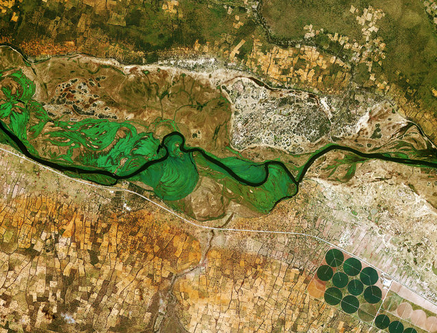 The Okavango River runs from Angola to Botswana. Here it marks the border between Namibia and Angola. (Photo by The European Space Agency)