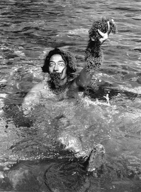 Spanish surrealist artist Salvador Dali (1904–1989) swimming holding seaweed, and wearing seaweed beard and wig, 1955. (Photo by Hulton Archive)