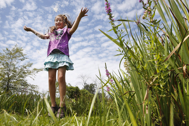 Yalena Leuliette, 7, of Greenbelt, Md., throws seeds from a cattail plant up in the air as she plays while visiting the Kenilworth Aquatic Gardens in northeast Washington, on Sunday, August 9, 2015. Leuliette visits the public garden with her parents a few times a year. (Photo by Jacquelyn Martin/AP Photo)