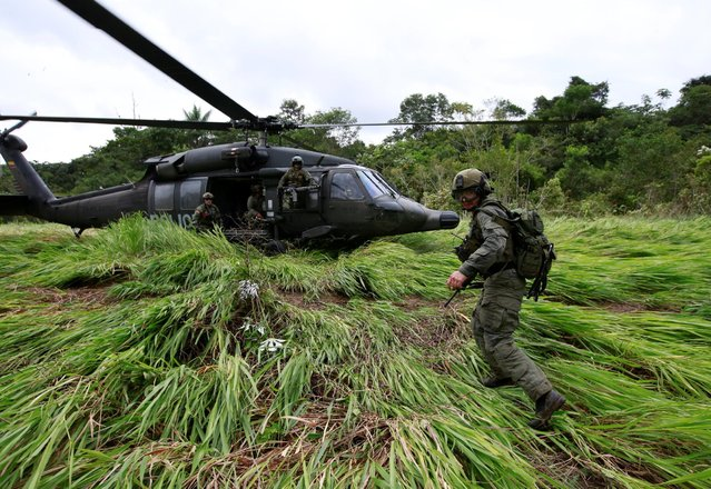 A Colombian anti-narcotics policeman takes position as he waits to board a helicopter in a rural area of Calamar in Guaviare state, Colombia, August 2, 2016. (Photo by John Vizcaino/Reuters)