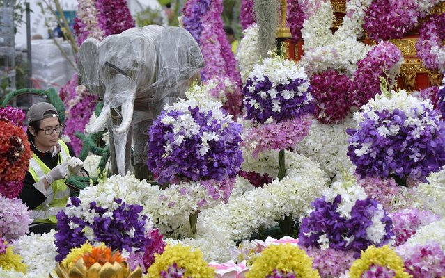 An exhibitor works on a display at the Royal Thai Embassy garden at the Chelsea Flower Show in west London, May 16, 2014. The Royal Horticultural Society Chelsea Flower Show which begins on Monday in the grounds of the Royal Hospital in Chelsea, is the most famous flower show in Britain and will be attended by Queen Elizabeth. (Photo by Toby Melville/Reuters)