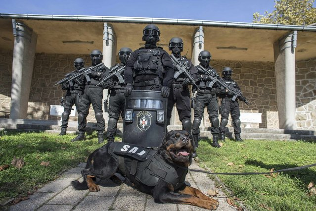 Serbian police officers of the Special Anti-Terrorist Unit pose for a picture in their base outside Belgrade October 8, 2014. (Photo by Marko Djurica/Reuters)