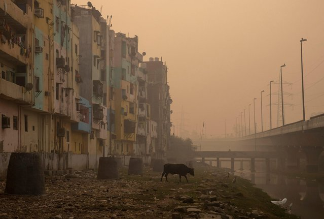 A residential area is seen shrouded in smog in New Delhi, India, November 9, 2020. (Photo by Danish Siddiqui/Reuters)