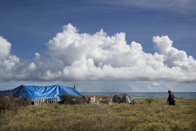 In this Tuesday, August 25, 2015 photo, a man walks toward his makeshift tent at a homeless encampment near the ocean in Waianae, Hawaii. There are nearly 300 homeless people living in the encampment. (Photo by Jae C. Hong/AP Photo)