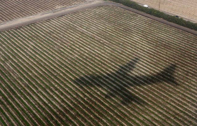 The shadow of Air Force One falls upon a farm field near Fresno, California in this February 14, 2014 file photo. (Photo by Kevin Lamarque/Reuters)