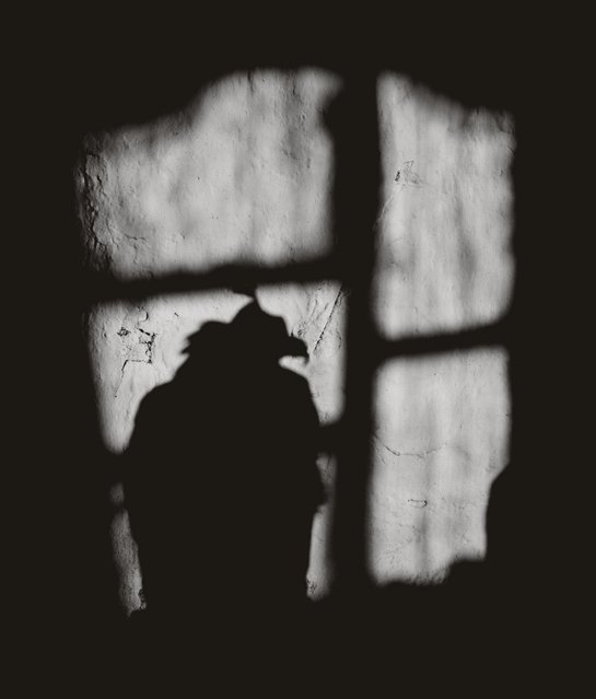 A hooded eagle is silhouetted on a wall. (Photo by Palani Mohan)