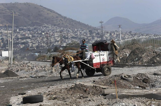A garbage collector rides his horses and cart into the municipal dump in Nezahualcoyotl, on the outskirts of Mexico City, February 18, 2015. (Photo by Henry Romero/Reuters)