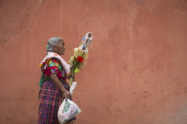 A Mayan woman carries a bouquet of palm fronds as she leaves the San Francisco Catholic Church after attending the traditional Palm Sunday Mass, marking the start of Holy Week ahead of Easter, in Antigua, Guatemala, Sunday, March 29, 2015. The fronds symbolize how worshippers greeted Jesus Christ over 2,000 years ago as he triumphantly returned to Jerusalem. (Photo by Moises Castillo/AP Photo)