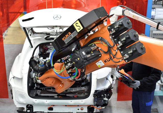 A robot installs a battery in a Mercedes-Benz hybrid car in a production line at the plant of German carmaker Mercedes-Benz in Bremen, Germany January 24, 2017. (Photo by Fabian Bimmer/Reuters)