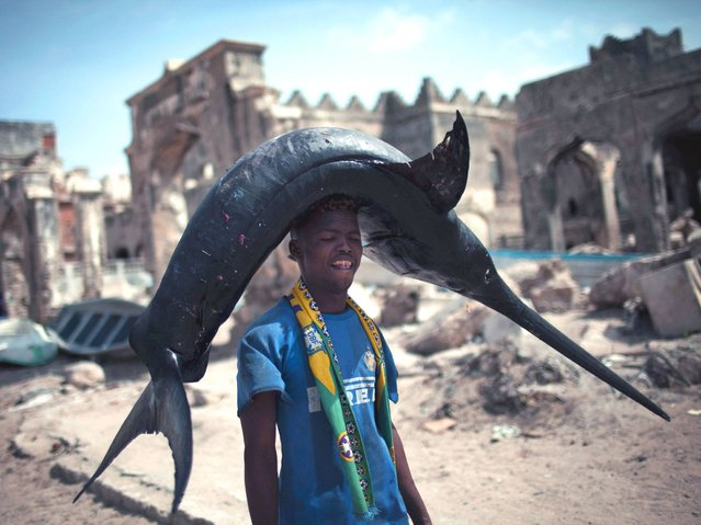 A Somali fisherman carries a swordfish from the port to the market in Mogadishu, Somalia on February 11, 2014. (Photo by J. M. Lopez/AFP Photo)