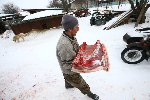 Nikolay Skidan, a hunter, carries pork in the village of Khrapkovo, Belarus February 3, 2017. (Photo by Vasily Fedosenko/Reuters)