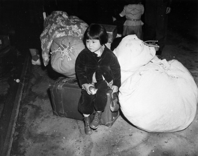 A young evacuee of Japanese ancestry waits with the family baggage before leaving by bus for an assembly center in California, in this April 1942 handout photo. (Photo by Courtesy Clem Albers/Department of the Interior/War Relocation Authority/National Archives/Reuters)
