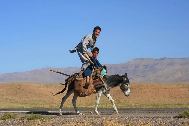 Afghan youths pose as they ride a donkey on the outskirts of Herat, on September 7, 2012. (Photo by Aref Karimi/AFP Photo)