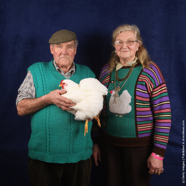 Allan and Dinah Procter, from Preston, show their 20 month old White Wyandotte Bantam hen