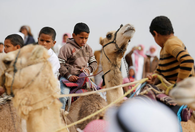 Jockeys, most of whom are children aged 11 or under, ride their mounts as they prepare to compete in the International Camel Racing festival at the Sarabium desert in Ismailia, Egypt, March 21, 2017. (Photo by Amr Abdallah Dalsh/Reuters)