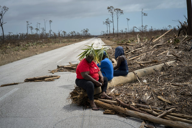 Women cover their heads with palmetto leaves as they rest on the road, after the passage of Hurricane Dorian, near High Rock in Grand Bahama, Bahamas, Thursday, September 5, 2019. The women are walking to the town of High Rock to look for their relatives. (Photo by Ramon Espinosa/AP Photo)