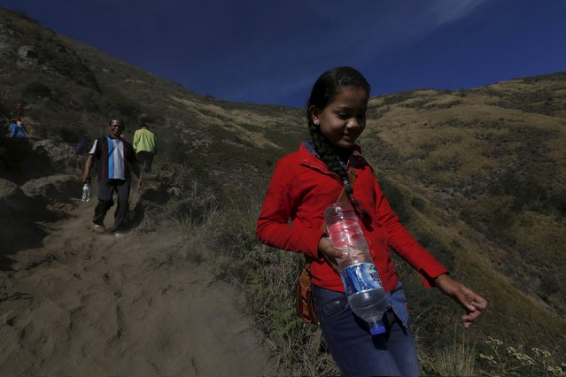 A Hindu villager walks down the mountain while holding a bottle of holy water for prayers ahead of the annual Kasada festival at Mount Bromo in Indonesia's East Java province, July 31, 2015. (Photo by Reuters/Beawiharta)