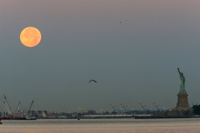 The effect known as Blue Moon is seen next to the Statue of Liberty in New York July 31, 2015. The Blue Moon effect refers to the second full moon in a calendar month, local media informed. (Photo by Eduardo Munoz/Reuters)