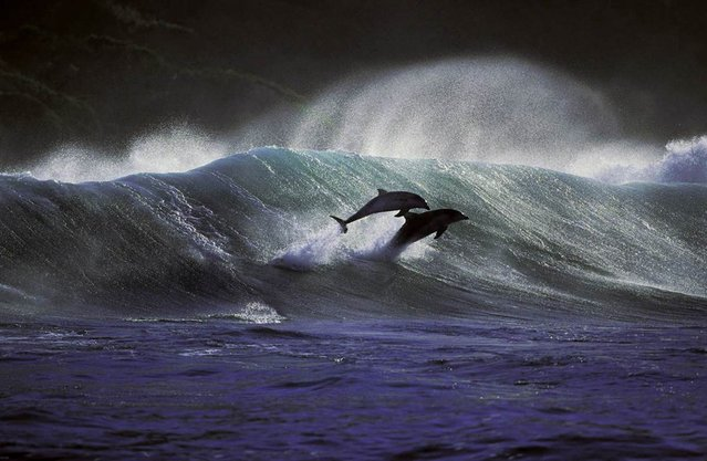 While on his trips to the South African coast, Greg Huglin took photos from a variety of vantage points: From a helicopter, from a motorized sailplane, from a boat in surfline and from land. All of the images were captured with film cameras, not digital cameras