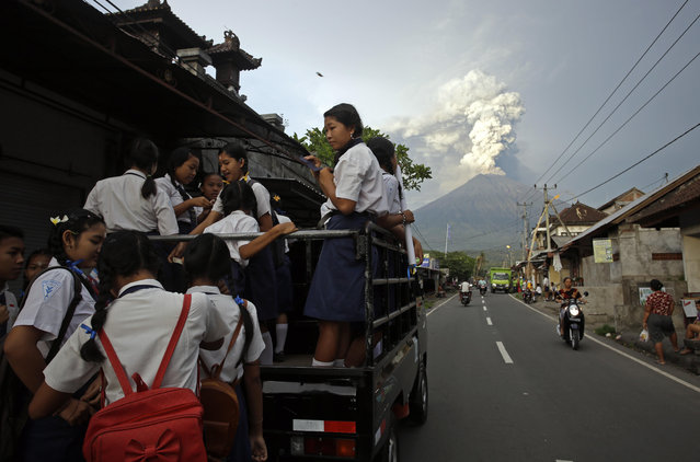 School students stand on a truck as their transport to go to school with the Mount Agung volcano spews smoke and ash in Karangasem, Bali, Indonesia, Tuesday, November 28, 2017. (Photo by Firdia Lisnawati/AP Photo)