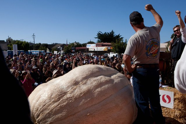 Grower John Hawkley and master of ceremonies Cameron Palmer (left to right) celebrate on stage at the 41st Annual Safeway World Championship Pumpkin Weigh-Off  in Half Moon Bay, Calif., Monday, October 13, 2014. (Photo by Alex Washburn/AP Photo)