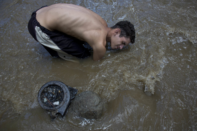 "Angel Villanueva waded into the dirty brown water of the Guaire River, the putrid channel snaking through Venezuela's capital, where he hoped to scavenge for a bit of treasure. He raked his hands across the bottom of the shallow waterway, turning his face away from the foul smell. Then he stood up, letting gravel and rocks fall through his fingers, scanning for an earring backing, lost rings or any other bits of precious metal to cash in for food. Scavenging alongside two others, Villanueva, 26, kept an eye on the dark clouds buffeting the mountains that surround Caracas. They could burst at any time, leaving him minutes to get out – or be washed away to his death. ""Working in the Guaire isn't easy"", he said, talking over the roar of traffic on a nearby highway. ""When it provides, it provides. When it takes, it takes your life"". Images of poor Venezuelans eating from garbage piles in Caracas have come to symbolize the deepening economic crisis in what was once one of Latin America's wealthiest countries. Less visible are the young men and boys who comb the Guaire's dirty waters for any sliver of metal that might help feed their families. The water is notoriously filthy – a drain for rainwater from the streets and sewers, along with industrial waste and an occasional treasure. ""As long as I can remember, the Guaire was this open sewage"", said Alejandro Velasco, a native of Caracas and professor of Latin American history at New York University. ""It certainly seems to reflect the depth and extent of the desperation that this particular crisis has spawned"". Nearly two decades of socialist rule in which food and oil production have plummeted amid poor management of state resources and a drop in world crude prices have driven many Venezuelans into desperation. Here: In this December 5, 2017 photo, David Garcia keeps his head just barely above water as he scrapes the bottom of the polluted Guaire River in search of gold and anything of value to sell in Caracas, Venezuela. The 19-year-old father of a 4-month-old baby said it was his first week working in the toxic, sewage filled waters and that his family didn't know this was how he was trying to earn money to put food on the table. (Photo by Ariana Cubillos/AP Photo)"