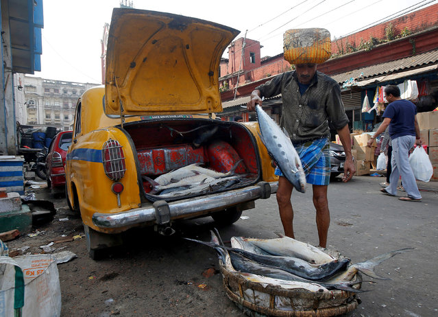 A worker unloads fish from a taxi boot at a fish market in Kolkata, India on February 5, 2018. (Photo by Rupak De Chowdhuri/Reuters)