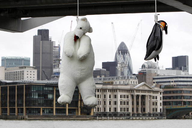 "Artist Vincent J.F. Huang's installation artwork ""Suicide Penguins"", a comment on global warming using glass penguins and a stuffed toy polar bear, hangs below the Millennium Bridge in London, February 13, 2010. (Photo by Luke MacGregor/Reuters)"