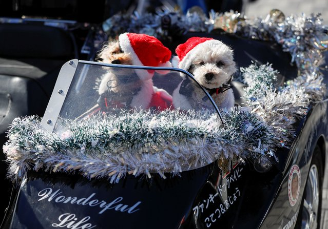 Pet dogs dressed in Santa Claus costumes are seen on a sidecar of a Harley Davidson's motorbike before Xmas Toy Run parade to rev up the holiday spirit and rally against child abuse, organised by Harley Santa Club, amid the coronavirus disease (COVID-19) outbreak, in Tokyo, Japan on December 20, 2020. (Photo by Issei Kato/Reuters)