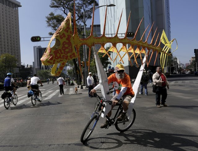 A man rides his bicycle while carrying an Alebrije as he takes part in a rally held the day before the start of the 2015 Paris Climate Change Conference (COP21), in Mexico City, Mexico November 29, 2015. (Photo by Daniel Becerril/Reuters)
