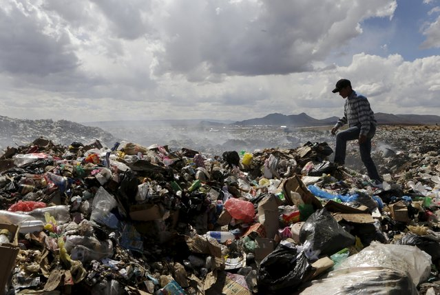 Bolivian student Esteban Quispe, 17, walks on a rubbish dump in Patacamaya, south of La Paz, December 10, 2015. (Photo by David Mercado/Reuters)