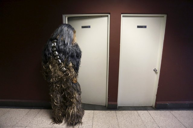 A cosplayer dressed as Chewbacca, a character from the Star Wars movie series, enters the bathroom during an event organised by Star Wars fan club Monterrey in Monterrey, Mexico, December 13, 2015. (Photo by Daniel Becerril/Reuters)