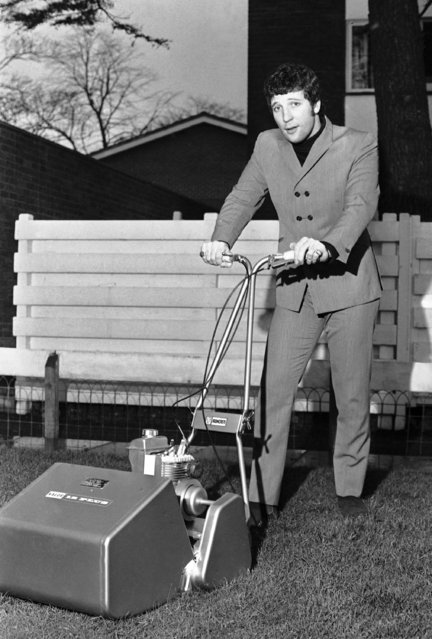 "Tom Jones, Britain's leading male pop singer tries his hand a mowing the lawn in the garden of his home at Shepperton, England, on January 25, 1967, with the gold lawnmower presented to him by the Valor Company on the occasion of the sale of over one million copies of his recording ""The Green, Green, Grass of Home"". (Photo by AP Photo)"